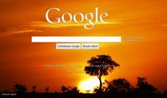 Google vlastní tapeta