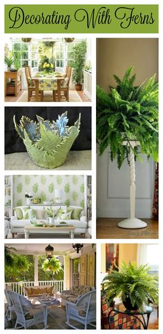 Don't you just love to decorate with ferns?  The stoneware fern bowl shown is by Lisa D Pottery. www.LisaDPottery.com