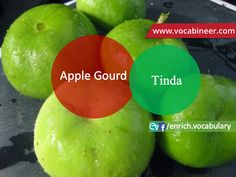 picture vocabulary, Urdu _Hindi to English vocabulary, Vegetables vocabulary wit… - Special Diet 2019 English Speaking Practice, English Language Learning, Learn English Words, Gre Vocabulary, English Vocabulary, Fruits And Vegetables Names, Esl Learning, List Of Spices, Fruit Shop