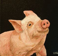 oil painting of pig by Patti Gilley http://www.pattigilley.com