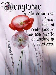 Good Day, Good Morning, Italian Greetings, Italian Memes, Humor, Gandhi, Anna, Butterfly, Google