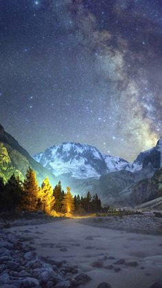 Night Mountains Shiny Sky View Pine Trees #iPhone #5s #wallpaper