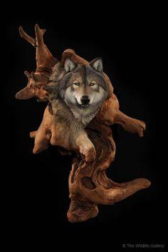 wildlife artist and sculptor Earl Matz