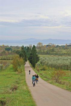 Il percorso tra gli olivi e il lago Trasimeno foto di
