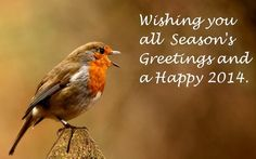 Happy New Year 2014 and Season's Greetings