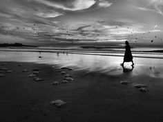 Rui Palha, Towards the unknown