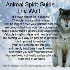 One of my spirit guides is a wolf bearing the resemblance of Fenrir. Wolf Spirit Animal, Animal Spirit Guides, Whats Your Spirit Animal, Animal Meanings, Animal Symbolism, Wolf Symbolism, Wolf Totem, Wolf Stuff, Native American Quotes