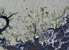 Earth From Space: Nhamundá by europeanspaceagency, via Flickr