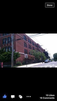 PS 129. My old school.