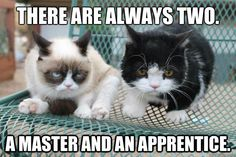 there are always two a master and an apprentice *
