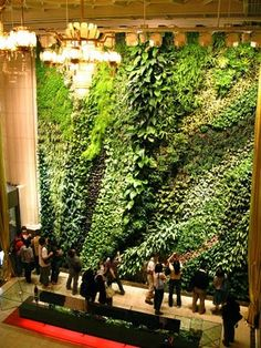 So much vertical garden love!