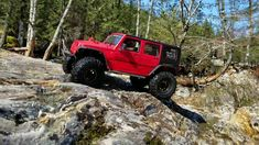 Trx-4 Jeep Rubicon the Rock Monster