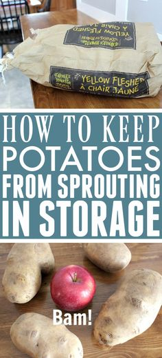 How to Keep Potatoes From Sprouting | The Creek Line House Canning Recipes, Crockpot Recipes, Healthy Recipes, Healthy Food, Easy Cooking, Cooking Hacks, Cooking 101, Potato Storage, Emergency Preparation