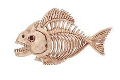 Crazy Bonez Skeleton Fish Crazy Bonez http://www.amazon.com/dp/B01B7OI5YU/ref=cm_sw_r_pi_dp_hJ41wb14MKDXZ