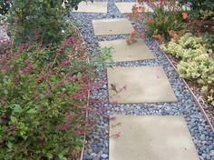 I want this around the pool. landscaping with pebble rocks | ... Gardener: Photo - Stepping Stone Pathway with Mexican Beach Pebbles