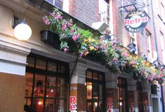 The Retro Bar, the Strand. Do they still have plants outside?   (LW20)