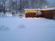 Lärchen-Schallschutzwand mit LED Beleuchtung im Winter
