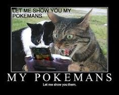 Image result for pokemon meme