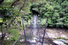 A Swinging Rope Bridge in the Abel Tasman National Park, New Zealand. Wooden Path, Abel Tasman National Park, Rope Bridge, Kiwiana, Photography For Sale, Image Now, Wilderness, New Zealand, Paths
