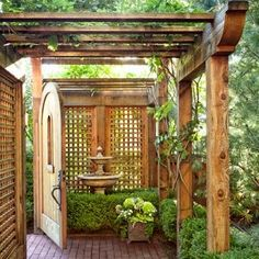 Privacy outdoor planting