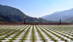 Offbeat Himachal Pradesh: Chail & Solan
