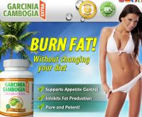 Garcinia Cambogia Extra - The New Garcinia Cambogia Extract  Raspberry Ketone Extract in 1 Miracle Fat Burner Bottle for Weight Loss