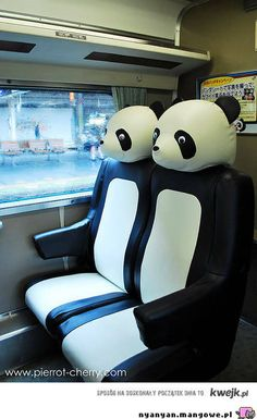 ʕ •ᴥ•ʔ C would love to fly in a plane with these seats.