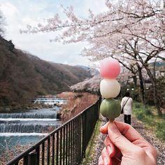 Hanami Dango, Japan