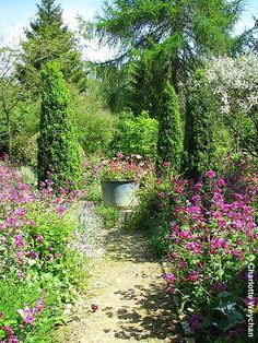 Mary Keen's garden in Gloucestershire