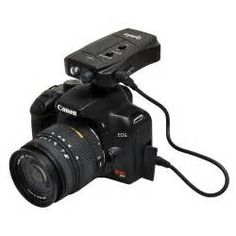Search Movement sensor camera trigger. Views 151532.