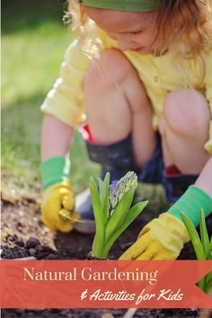20+ great organic and natural gardening tips activities, including ideas and plans, as well as fun gardening activities for kids. Natural Living | Organic Gardening |Gardening with Kids