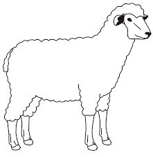 Farm Animal Coloring Sheets Inspirational Coloring Coloring Pictures Of Farm Animals for Kids Sheep Outline, Animal Outline, Coloring Pictures Of Animals, Farm Animals Pictures, Farm Animal Coloring Pages, Cat Coloring Page, Colouring, Outline Drawings, Animal Drawings