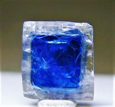 Carletonite - from the Poudrette Quarry, Canada. - perfect little cubic crystal with blue inside a clear zone. Minerals And Gemstones, Crystals Minerals, Rocks And Minerals, Stones And Crystals, Blue Crystals, Cool Rocks, Beautiful Rocks, Mineral Stone, Rocks And Gems