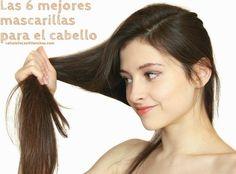 Dentro de las mejores mascarillas para el cabello, están: aquellas preparadas con aguacate, huevo, sábila, leche, yogurt, aceite de oliva, entre otros....