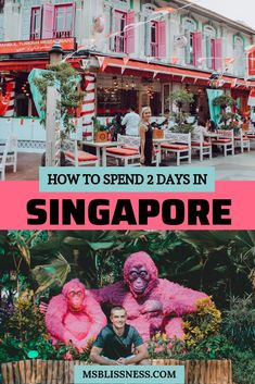 travel destinations Asia singapore - 2 Days in Singapore: The Ultimate Guide - Ms Blissness Singapore Guide, Singapore Travel Tips, Singapore Itinerary, Singapore City, Visit Singapore, Singapore Outfit, Cool Places To Visit, Places To Travel, Travel Destinations
