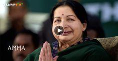 Watch Jayalalitha Health LIVE Status on Puthiya Thalaimurai tamil news channel. watch Puthiya Thalaimurai tamil news channel LIVE