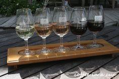 wine tasting at vynfields wineyard in martinborough, new zealand Wine Tasting, White Wine, Beautiful Gardens, Wines, New Zealand, Anti Aging, Alcoholic Drinks, Glass, Travel