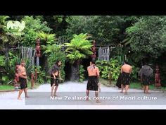 My Destination Rotorua's Guide to Rotorua, New Zealand All Things New, New Zealand Travel, Travel Videos, Auckland, Cool Places To Visit, Kiwi, The Good Place, Pride, World