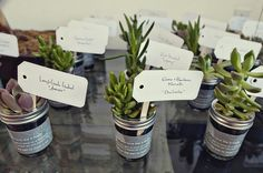 Wanting to give your guest some lovely wedding favors that can last long past your wedding instead of food or drinks? There you are! Awesome plant wedding favors are definitely your right choice! From herbs to bulbs, succulents to cacti, there are lots of options for small plants that could be given as wedding favors. …