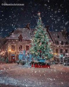 Merry Christmas Gif, Christmas Music, Christmas Love, Christmas Deco, Christmas Greetings, Christmas Lights, Xmas, Beautiful Christmas Scenes, Christmas Scenery
