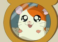 New trending GIF on Giphy. funny anime cute kawaii hamtaro. Follow Me CooliPhone6Case on Twitter Facebook Google Instagram LinkedIn Blogger Tumblr Youtube