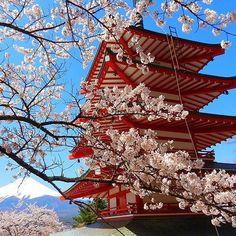 【iwatakappuru】さんのInstagramをピンしています。 《2月23日は富士山の日です!自分の大好きな写真ですね。富士山、愛してる!!! Today is Mount Fuji Day! And this is my favorite photo of him ever (by Beta) / ^-^ \  #nofilter #mtfuji #mountfuji #mtfujiday #japan #yamanashi #chureitopagoda #sakura #cherryblossom #spring  #富士山 #富士山の日 #日本 #山梨県 #忠霊塔 #パゴダ #富士吉田市 #桜》