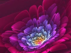 Fractals in Nature Flowers Flowers Nature, Red Flowers, Hd Flower Wallpaper, Pink Wallpaper, Floating Flowers, Patterns In Nature, Abstract Flowers, Flower Photos, Fractals