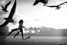 black-and-white:    Frequent flyers (by ninni garnett) - #running, #frombehind, #birds