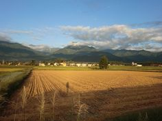 安曇野移住生活~北アルプスを眺めて暮らす:安曇野の稲刈り進む