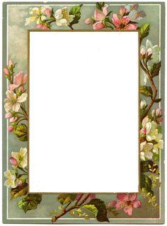*The Graphics Fairy LLC*: Vintage French Menu - Blossom Frame