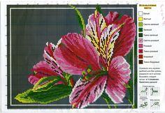 Gallery.ru / Фото #103 - разные цветочные схемы - irisha-ira