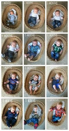 Monthly Baby Photo Ideas – Track Your Baby's Age in Photos Use a Basket to Show Baby's Growth like Little Lucy Lu. Monthly Baby Photo Ideas – Track Your Baby's Age in Photos plus FREE Monthly Printable Milestone Stickers and Signs on Frugal Coupon Living. Monthly Baby Photos, Newborn Baby Photos, Baby Poses, Newborn Baby Photography, Newborn Pictures, Baby Pictures, Baby Growth Pictures, Toys Photography, Baby Monat Für Monat