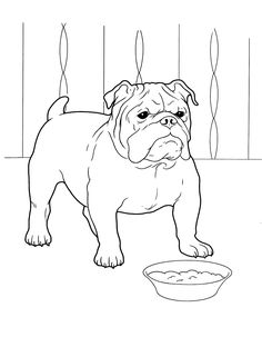 dog_coloring_pages_6 Teenagers coloring pages