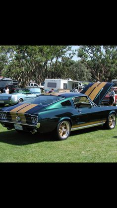 1969 FORD MUSTANG or MACH 1 GT DECAL TAG KIT